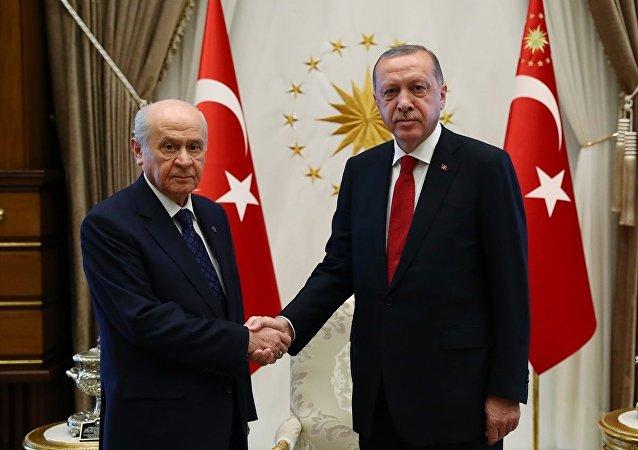 Erdoğan - Bahçeli