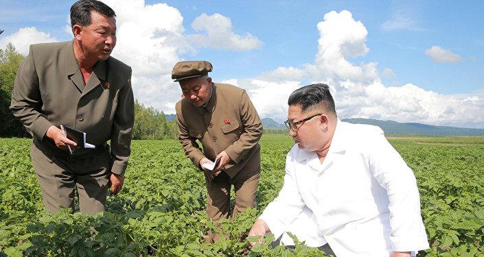 Kuzey Kore lideri Kim Jong-un, Samjiyon bölgesindeki Chunghung patates çiftliğini teftiş etti