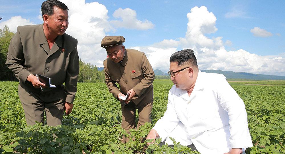 Kim Jong-un patatesleri ziyaret edeceğim dedi Pompeo ile görüşmedi