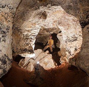 Kırım'da mamut kalıntılarının bulunduğu bir mağara açığa çıkarıldı