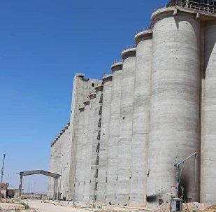 Suriye ordusu, Deraa'da hapishane binası ve tahıl ambarını militanlardan kurtardı
