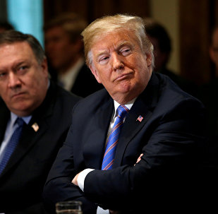 Donald Trump-Mike Pompeo