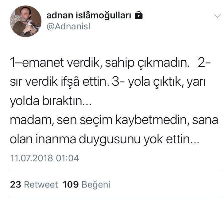 İslamoğulları, 11 Temmuz'da kişisel Twitter hesabında Akşener'i eleştirmişti