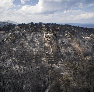 Mati Köyü-Orman yangını