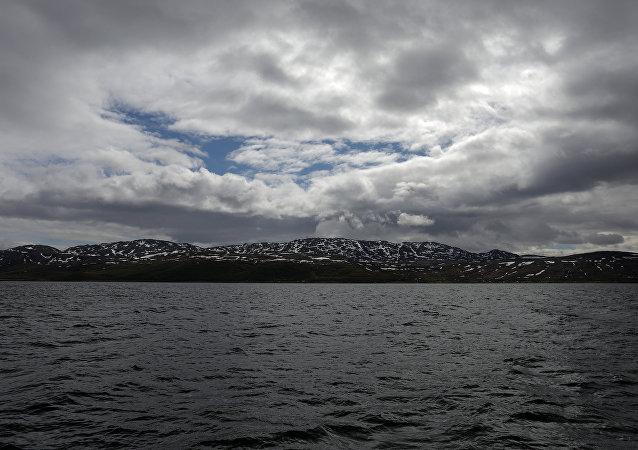 Arktik-Norveç