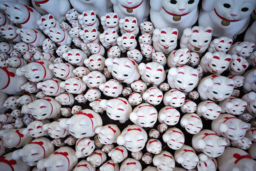 Patisi ile çağırma hareketi yapan yaklaşık 10.000 beyaz kedi heykeli Tokyo'daki Gotokuji tapınağının her yerine yayılmış durumda. Bu durum tapınağı hem Japonya içinden hem de ülke dışından sosyal medya meraklıları için bir çekim yeri haline getirmiş durumda.  Hong Kong'dan gelen 25 yaşındaki Emily Lin adlı turist Aslında Google'da 'Tokyo'daki Instagram mekanları' diye arama yaptım. Burasının adı Instagram fotoğrafları için en uygun yerler arasındaydı. Bu kediler Japon kültüründe iyi şansı sembolize ediyor diye konuştu.