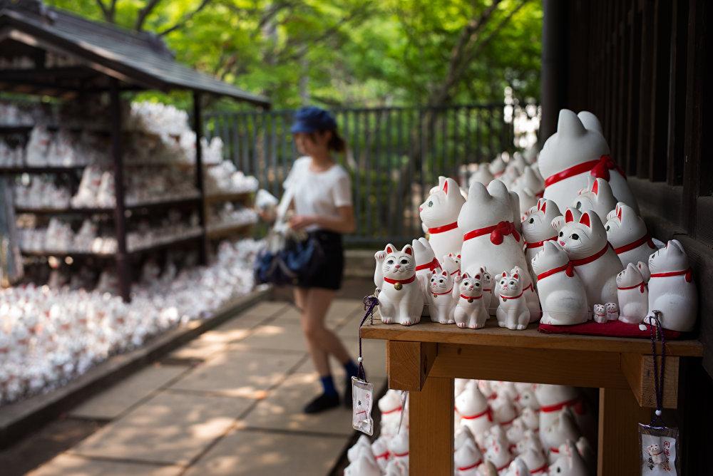 Tayvan'dan gelen 31 yaşındaki fotoğrafçılık öğrencisi Ying-Chi Hsueh ise kedilerden etkilenerek tapınağı ziyaret etmeye karar vermiş. Ying Instagram'da bir fotoğraf gördüm ve buraya geldim dedi.