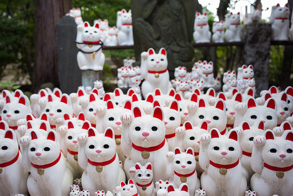 Japonca'da 'Maneki-neko' (Çağıran kedi) denilen ve özellikle tüccarların bolluk ve bereket getirdiğine inandıkları için dükkanlarına koydukları heykellerini hikayesi 15. yüzyılda Gotokuji tapınağında yaşandığına inanılan bir efsaneye dayanıyor.  Efsaneye göre tapınaktaki rahiplerin 'Tama' adını verdikleri bir kedi birgün tapınağın dışında gezinirken güçlü bir samuraya rastlar. Tama'nın eliyle samurayı çağırma hareketi yapması üzerine adam tapınağa girer. Bunun hemen ardından ise gökgürültülü bir fırtına yaşanır. Kedinin fırtınadan kaçması için kendisine yardım etmesinden etkilenen samuray da tapınağın koruyucusu olur.