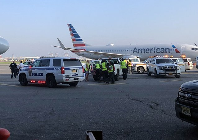 ABD'de uçakta fetüs bulundu