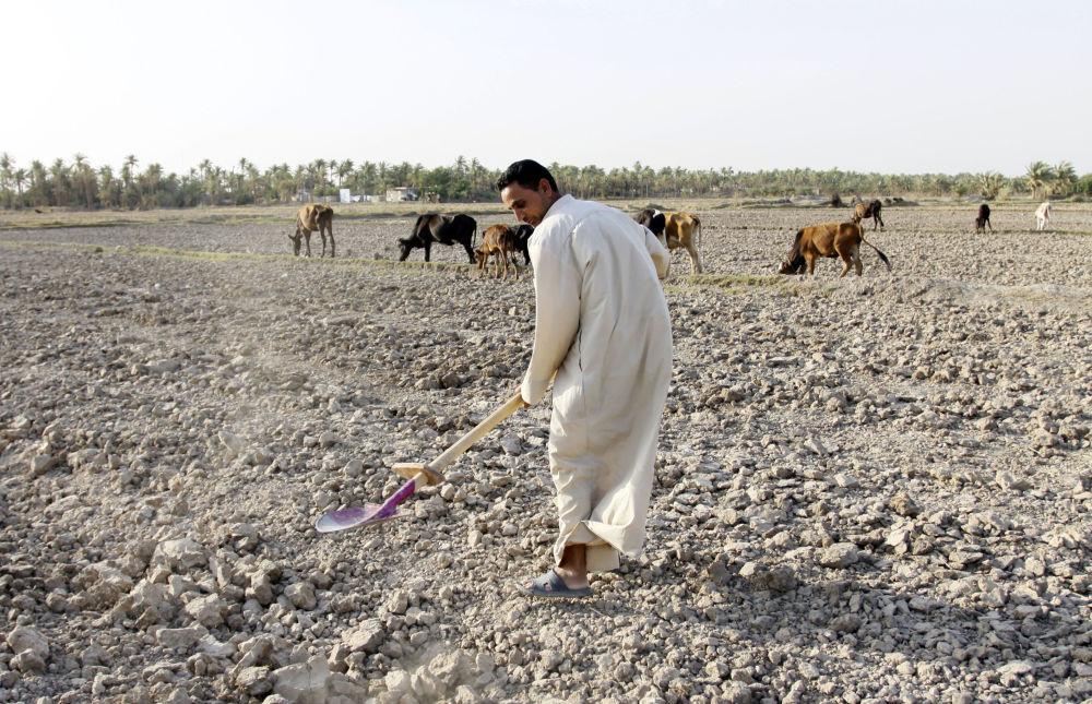 Küresel kuraklık