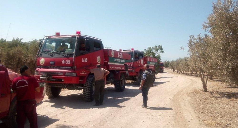 Suriye'nin Afrin ilçesine bağlı Cinderes beldesinde çıkan orman yangınında 3 hektar alan zarar gördü.