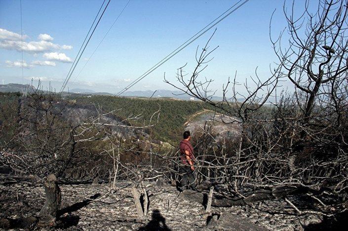 Bursa'nın Mudanya ilçesinde, ormanlık alanda çıkan ve şiddetli rüzgar nedeniyle büyüyerek 15-20 hektar alanda etkili olan yangın kontrol altına alındı.