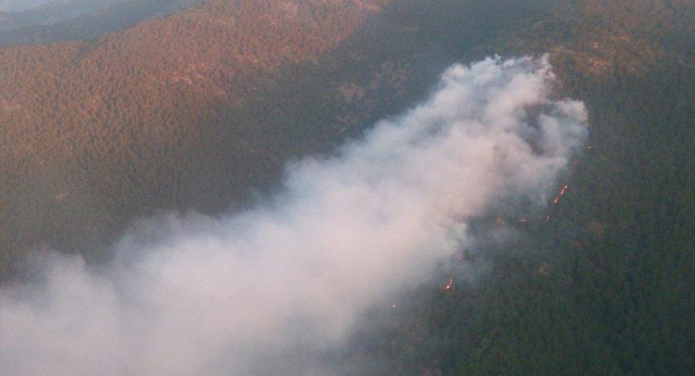 Hatay'ın Antakya ilçesinde çıkan orman yangını havadan ve karadan yapılan müdahaleyle kontrol altına alınmaya çalışılıyor.