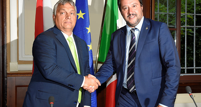 Orban ile Salvini