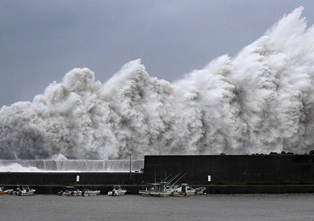 Japonya'da Jebi tayfunu hayatı felç etti