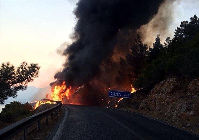 Hareket halindeki otobüste başlayan yangın ormanlık alana sıçradı