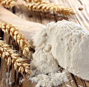 Buğday unu