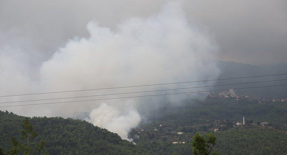 Hatay orman yangını