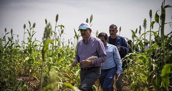 Tarım ve Orman Bakanı Bekir Pakdemirli Sudan'da
