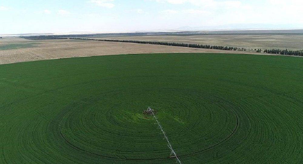 Hazine, tarım, arazi