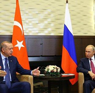 Rus Senatör: Rusya ve Türkiye, İdlib'deki tampon bölgeyi ihlal edecek militanları yok edecek 80
