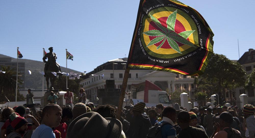 Cape Town'daki Güney Afrika Parlamentosu önünde esrarın yasallaştırılması için gösteri yapan eylemciler
