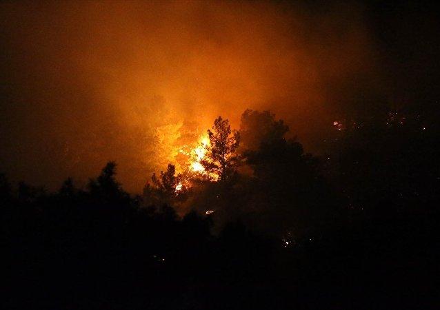Antalya'da üç ayrı noktada orman yangını çıktı