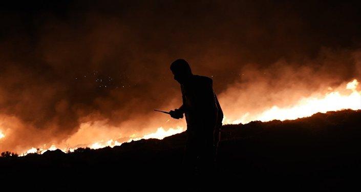 Bodrum makilik orman yangını