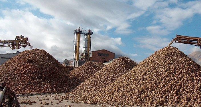 Bor Şeker Fabrikası