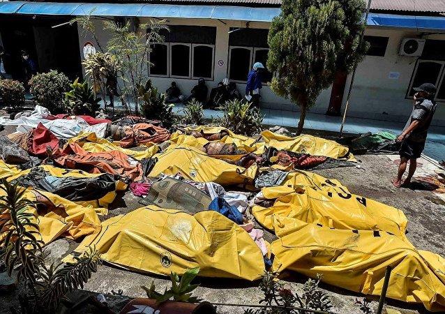 Endonezya, deprem, tsunami