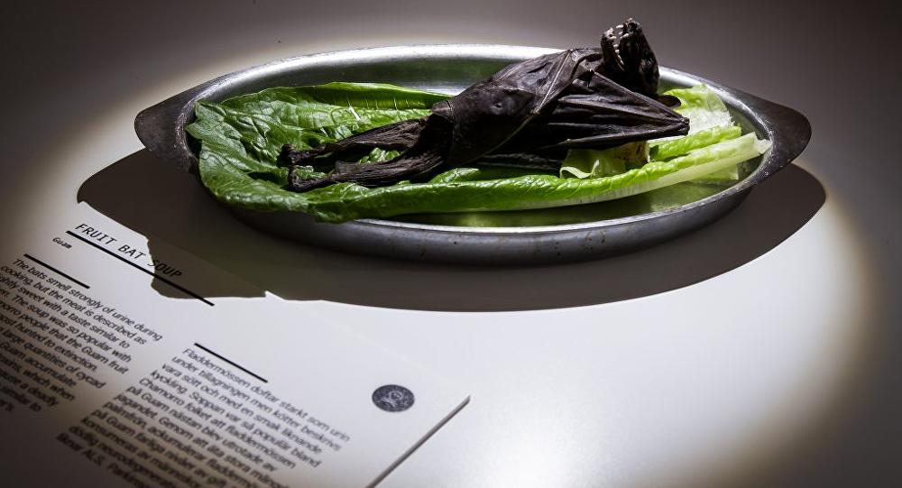 'İğrenç Yemek Müzesi' açıldı: Yarasa çorbası, boğa penisi, çürük yumurta