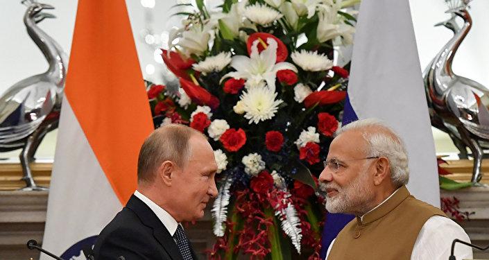 Rusya Devlet Başkanı Vladimir Putin- Hindistan Başbakanı Narendra Modi