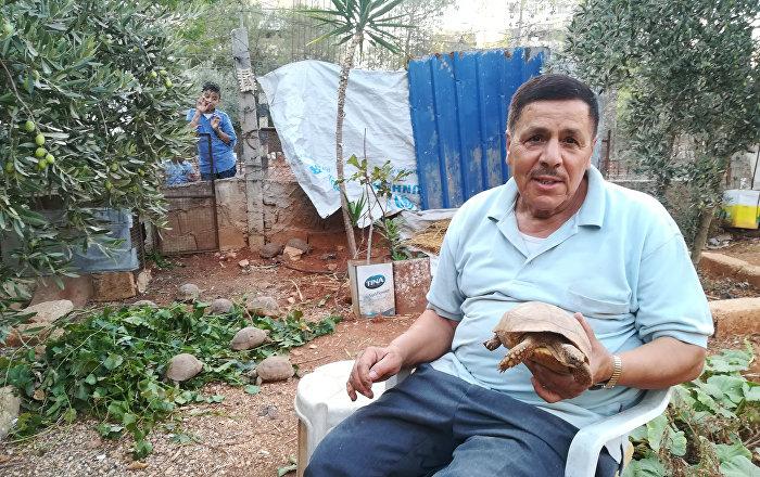 'Kaplumbağa bahçesi'
