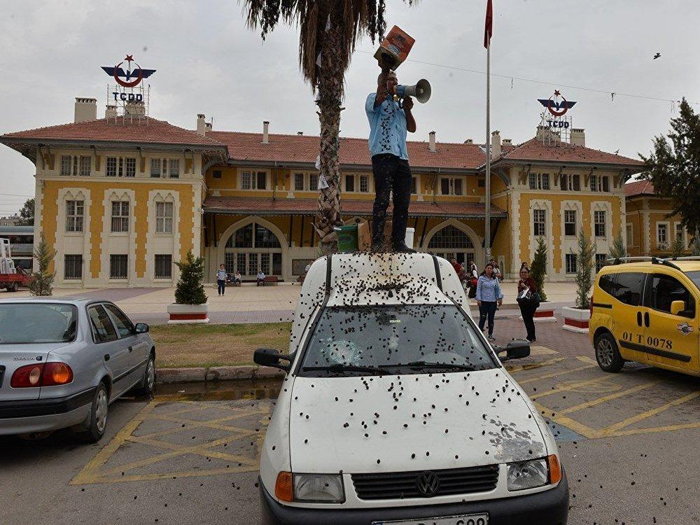 Dolandırıldığını söyleyen Adanalı esnaf, protesto için ürünlerini etrafa saçınca para cezası yedi 63