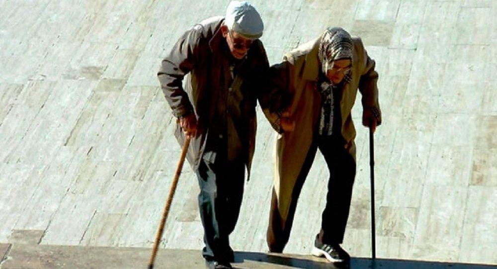 Anıtkabir'deki törene yaşlı çift bastonlarıyla el ele geldi