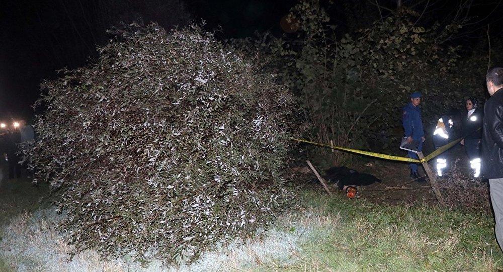 Düzce'de kestiği ağacın altında kalan kişi hayatını kaybetti.