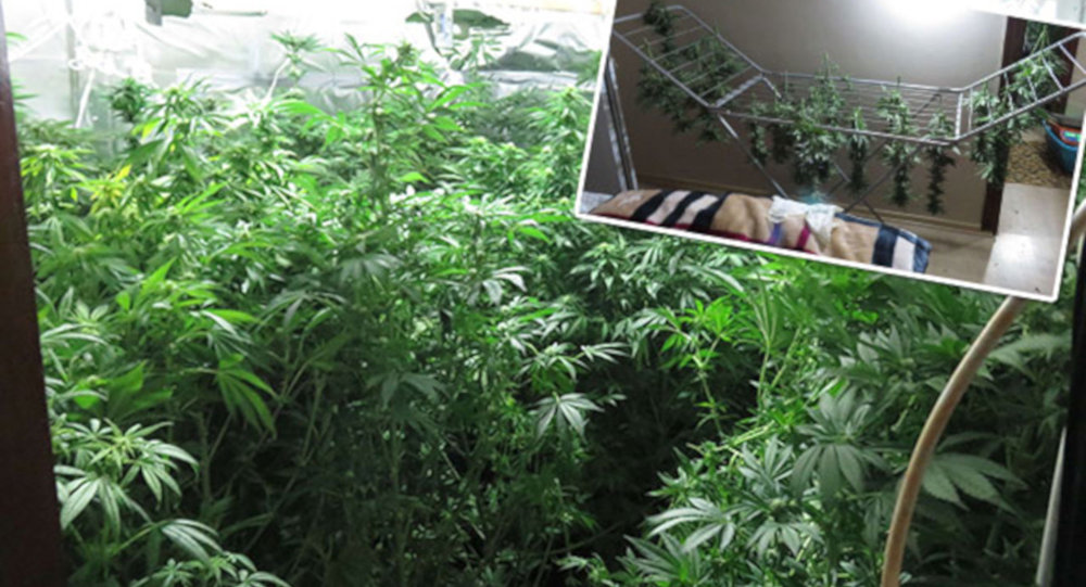 Beykoz'da villaya uyuşturucu baskını