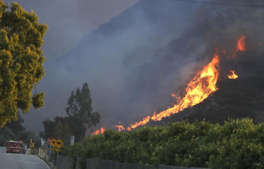Kaliforniyadaki yangın komşu husumetinden çıkarıldı