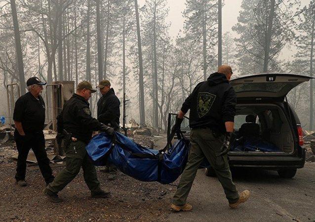 Kaliforniya orman yangını