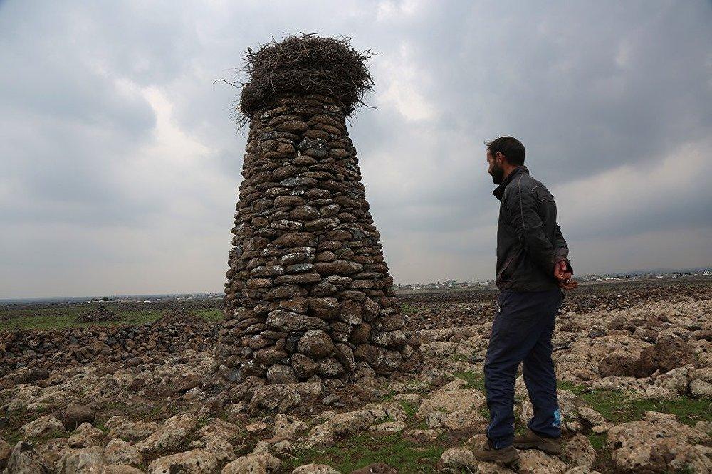 'Kuşçu' denilen Mehmet Salih Arslan leylekler için yaptığı taştan kuleler
