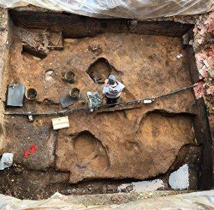 Moskova Bölgesi'nde içine define saklanmış mamuta ait kafatası bulundu