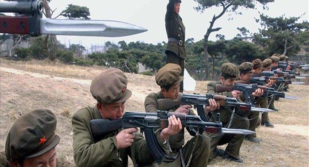 Kuzey Koreli asker Güney Kore'ye iltica etti