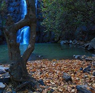 Diyarbakır'ın saklı cenneti: Şeyhandede Şelalesi
