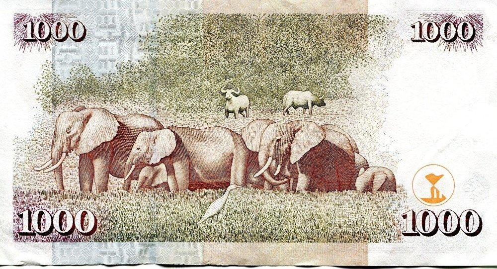 1000 Kenya şilini banknotunun önyüzünde ülkenin ilk lideri Jomo Kenyatta'nın, arka yüzünde Afrika fillerinin resmi var.