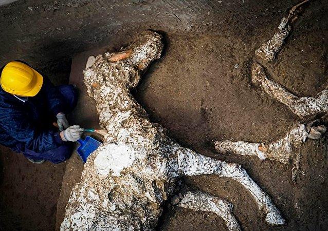 Pompeii - taşlaşmış at kalıntıları bulundu