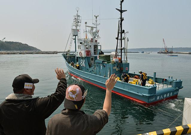 Japonya - balina