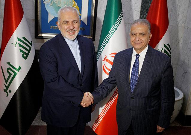 İran Dışişleri Bakanı Cevad Zarif ve Irak Dışişleri Bakanı Muhammed Ali Elhakim