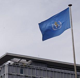 Dünya Sağlık Örgütü (DSÖ)