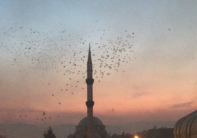 Şanlıurfa semalarına 'güvercin döküldü'