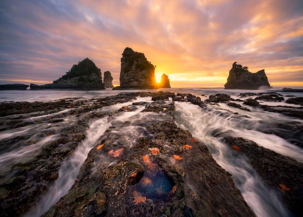 2018 Panasonic Fotoğraf Yarışması'nın kazananları belli oldu